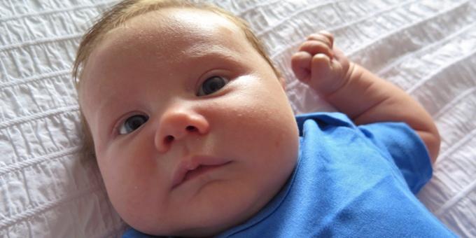 baby talk body 2